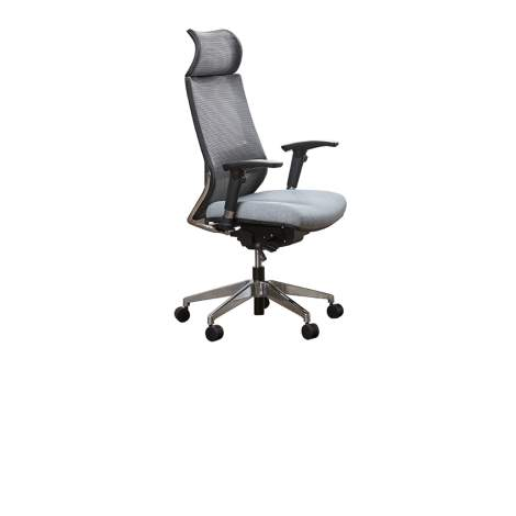 CEO High Back Excecutive Ergo Chair, Unique Office Seating Collection