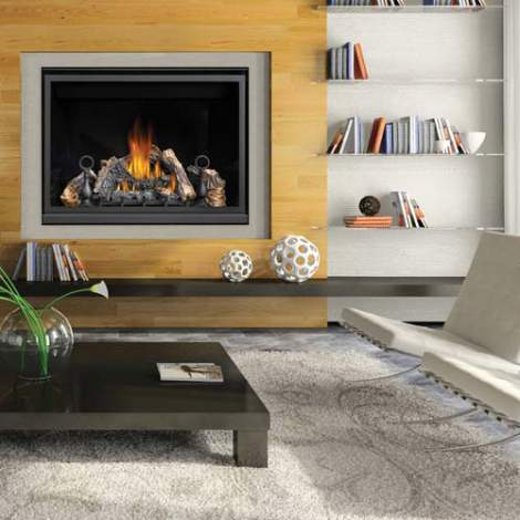HD46 Clean Face Fireplace by Napoleon